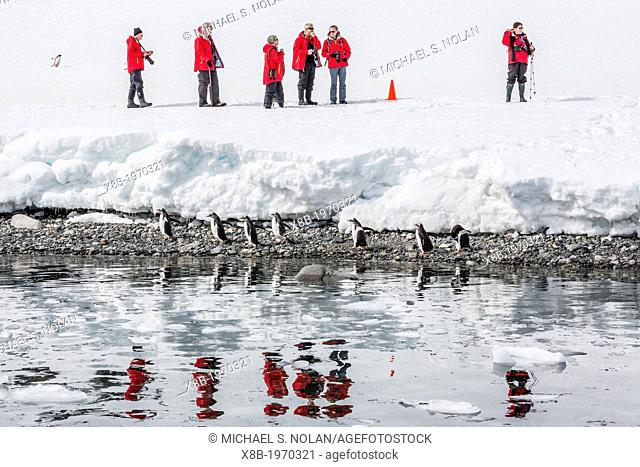 Guest from the Lindblad Expedition ship National Geographic Explorer enjoy Cuverville Island, Antarctica, Southern Ocean