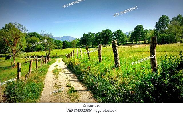 Rural landscape, Nava, Asturias, Spain