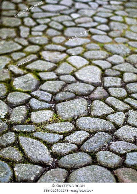 close up of cobblestone path