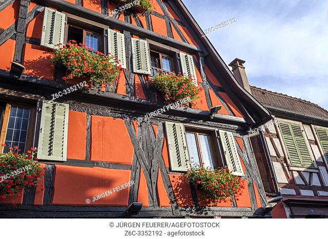 colorful half-timbered house of Ribeauvillé, Alsace Wine Route, France, red house with flower decoration