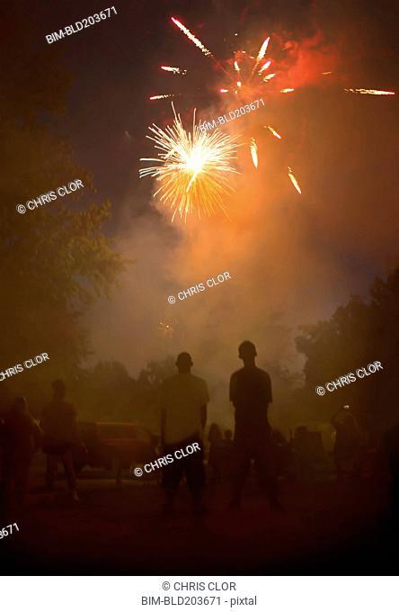 People watching fireworks in night sky