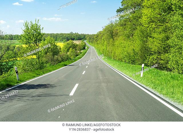 Road in countryside in spring, Birkenfeld, Franconia, Bavaria, Germany