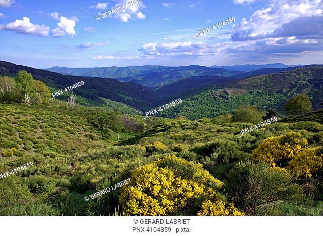 France, Gard, Cevennes, valleys of the Gardons /