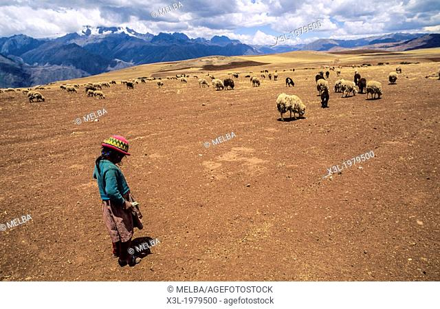 A local shepherd in Nevado Chicon and Urubamba valley. Peru