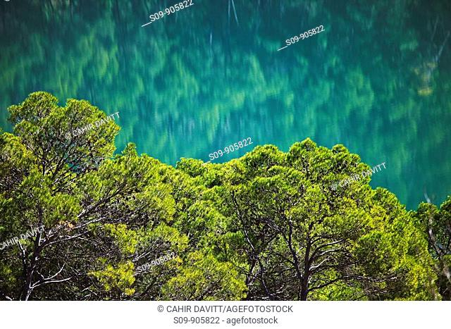Spain, Andalucia, Bonache, Bujaraiza, Trees and the reflection of the Guadalquivir River in Cazorla National Park
