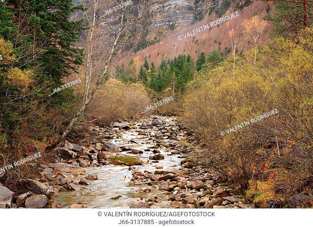 Arazas river in the Ordesa valley from the Cazadores bridge. Ordesa y Monte Perdido national park. Huesca