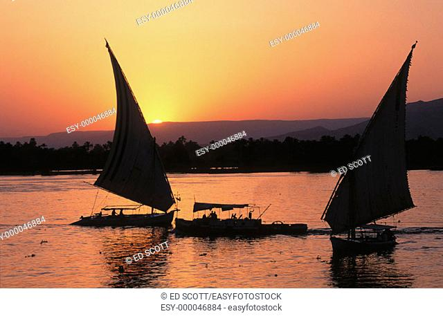 Feluccas on Nile River. Egypt