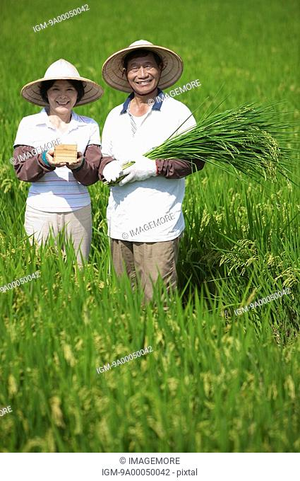 Farmer couple holding rice plants and a box of rice in rice field