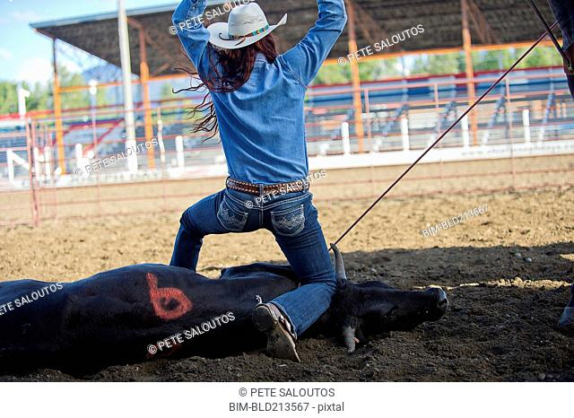 Caucasian cowgirl tying cattle in rodeo on ranch