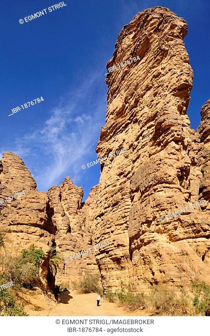 Rock formation at Wadi Essendilene, Tassili n'Ajjer National Park, Unesco World Heritage Site, Wilaya Illizi, Algeria, Sahara, North Africa