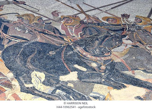 Italy, Europe, roman, ancient Rome, Pompeii, ruins, town, preserved, preservation, art, history, restoration, archaeology, Italian, Pompeii, mosaic, horse