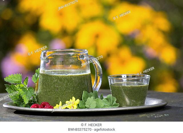 Green Smoothie made of Stinging Nettle and dandelion