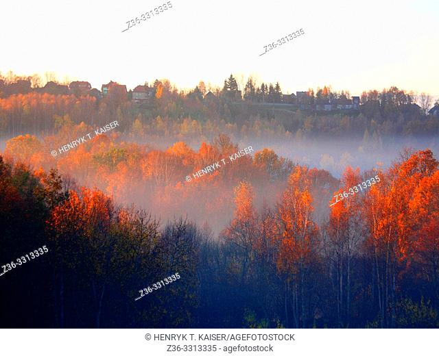 Autumn landscape on foggy evening in lesser Poland near Krakow, Poland