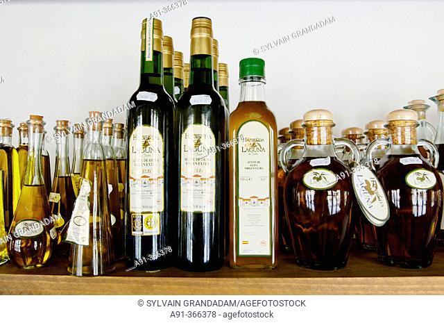 Laguna Historic Olive oil factory near Baeza. Andalucia. Spain