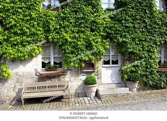 NARROW COBBLESTONES STREET AND OLD HOUSESWALLS COVERED WITHPARTHENOCISSUS QUINQUEFOLIAVIRGINIA CREEPERIN THE HISTORICAL CENTER OF DURBUYTHE SMALLEST CITY IN THE...