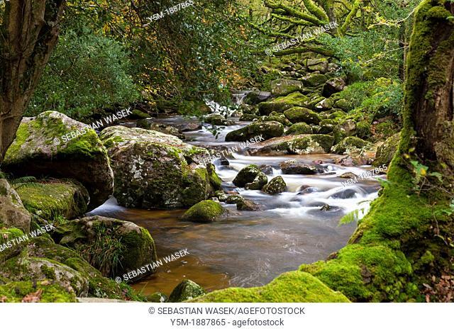 Rocky River Plym near Shaugh Prior in Dartmoor National Park