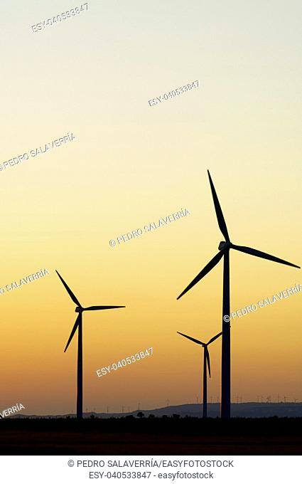 Windmills for renewable electric energy production, La Muela, Zaragoza, Aragon, Spain