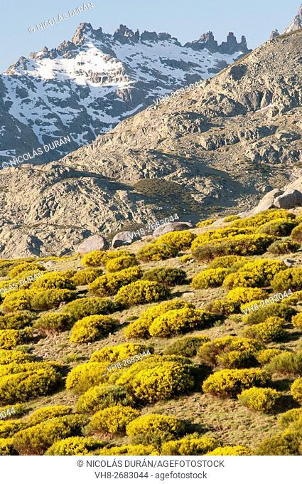 Circo de Gredos view (from Cuerda del Barquillo). Zapardiel de la Ribera. Sierra de Gredos Regional Park Province of Avila. Casilla Leon. Spain