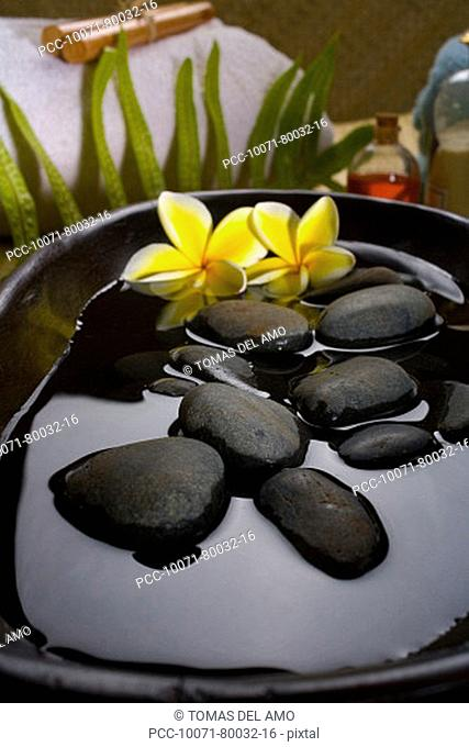 Spa elements, Stones in water in a black bowl with plumeria flowers, towels, plants and bath products in background