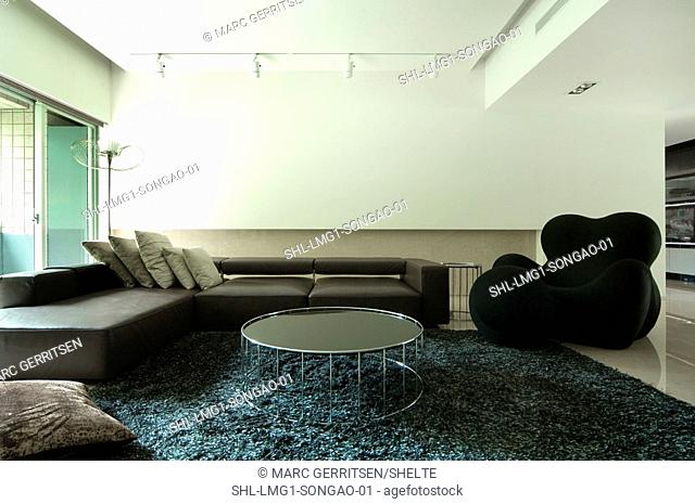 Modern living room and furniture