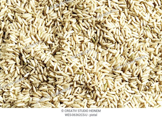 Longgrain rice, close-up