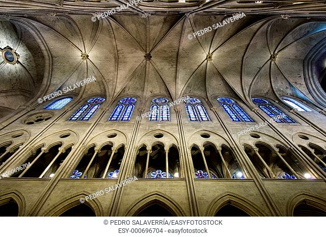dome of the cathedral of Notre Dame in Paris, France