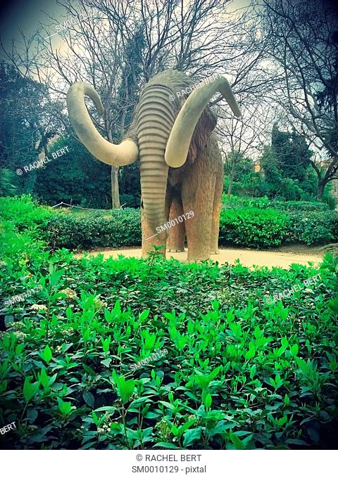 Mamut, Mammuthus Primigenius, Parc de la Ciutadella, Barcelona, Spain