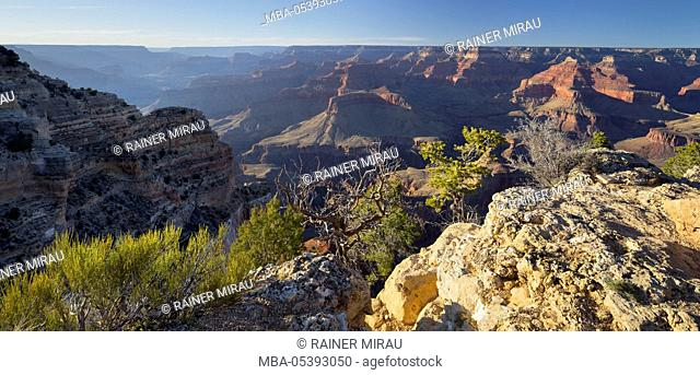 Powell Point, South Rim, Grand Canyon National Park, Arizona, USA
