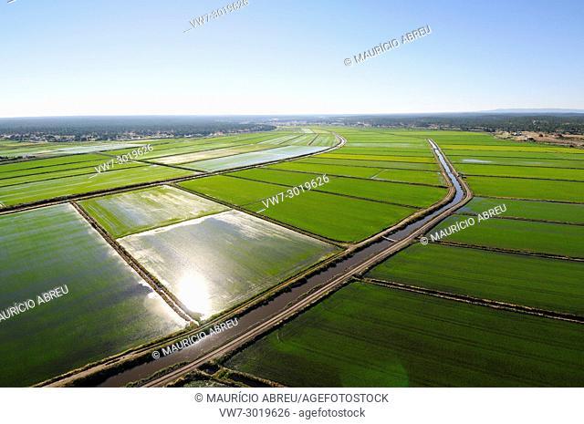Aerial view of rice fields. Comporta, Alentejo, Portugal