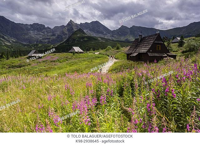 Cabin, Valle de gasienicowa, parque nacional Tatra, Lesser Poland Voivodeship, Cárpatos, Polonia, europe