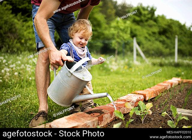 Father with his little son in the garden watering seedlings