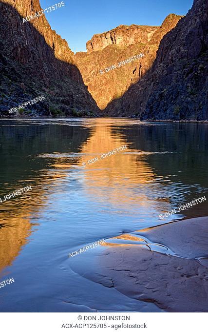 The Grand Canyon reflected in the Colorado River at False Trinity Camp (mile 91.5), Grand Canyon National Park, Arizona, USA