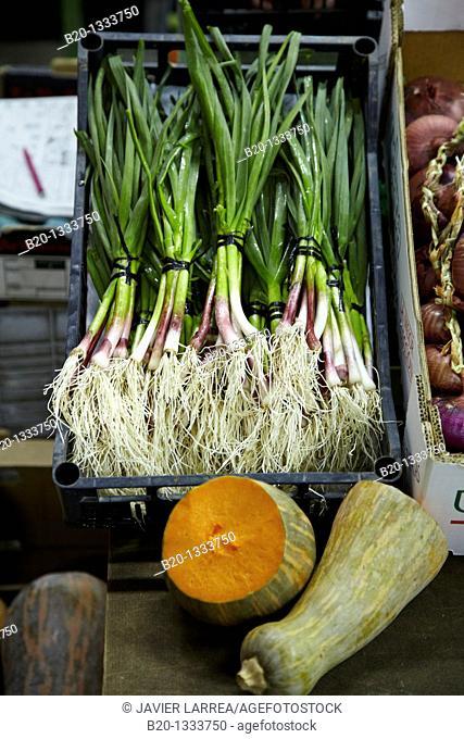 Spring garlic, Mercabilbao fruits and vegetables wholesale market, Basauri, Bilbao, Bizkaia, Euskadi, Spain