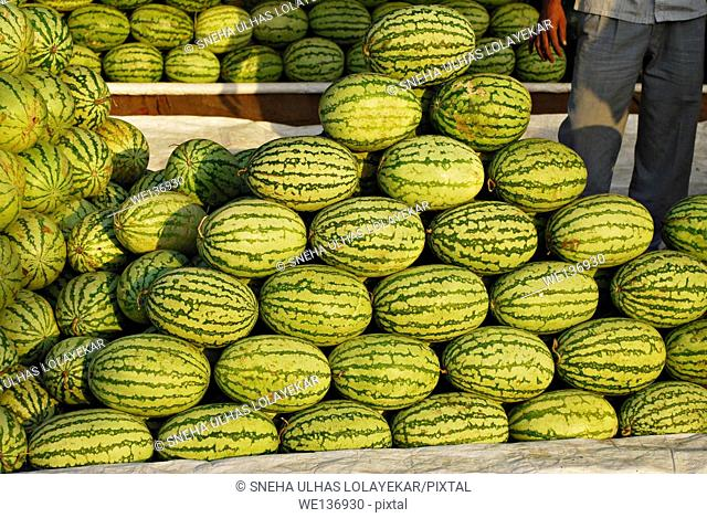Watermelon for sale at,poona,Mahrshtra,India