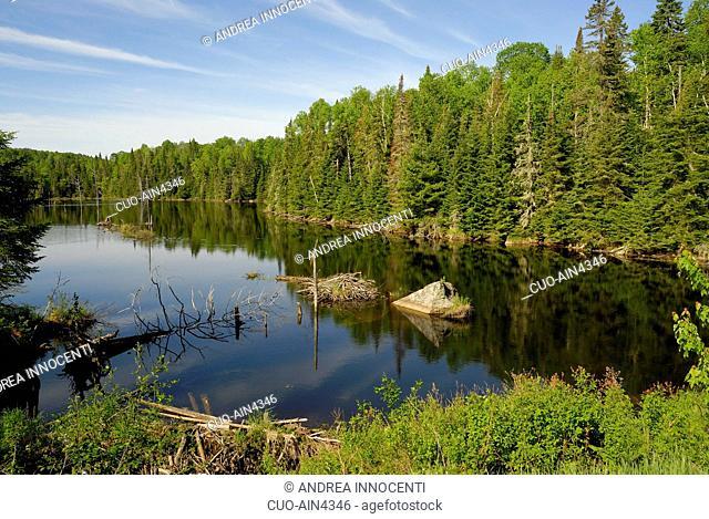 Canada - Quebec - Parc de la Mauricie