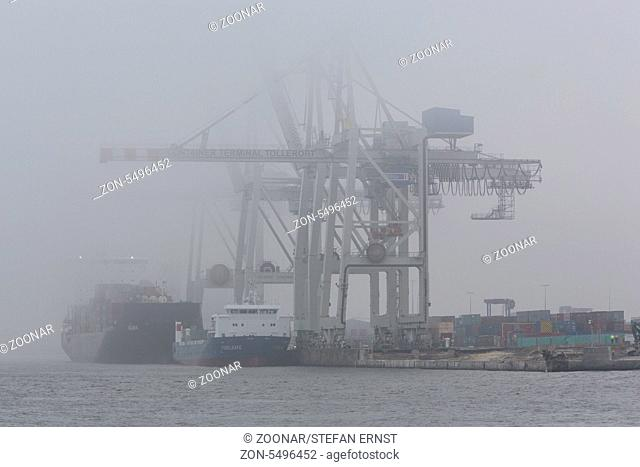 Containerterminal Tollerort im Nebel, Hamburg, Deutschland / Container terminal Tollerort with fog, Hamburg, Germany
