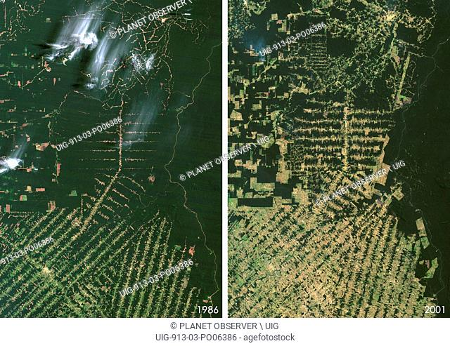 Satellite view of deforestation in East Rondonia, Brazil in 1986 and 2001. This before and after image shows deforestation impact over the years