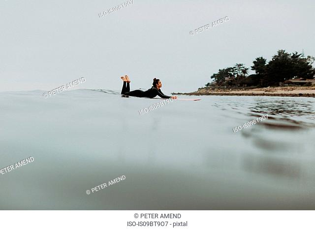 Young female surfer lying on surfboard in misty calm sea, Ventura, California, USA