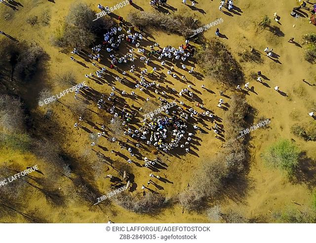 Aerial view of the slaughter of a bull during the Gada system ceremony in Borana tribe, Oromia, Yabelo, Ethiopia