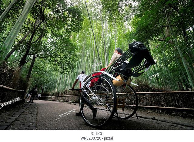 Pulled rickshaw at the bamboo forest in Arashiyama