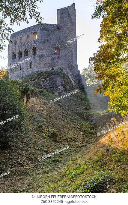 castle ruin of the village Andlau with autumn foliage, Alsace, France, Spesburg, Château de Spesbourg with gothic windows