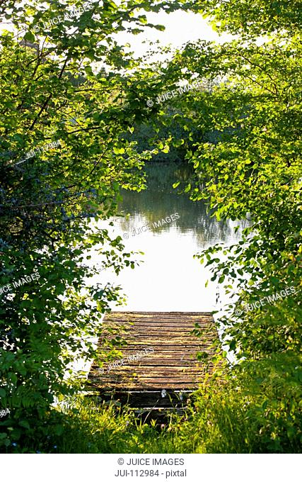 Idyllic dock and lake beyond green bushes