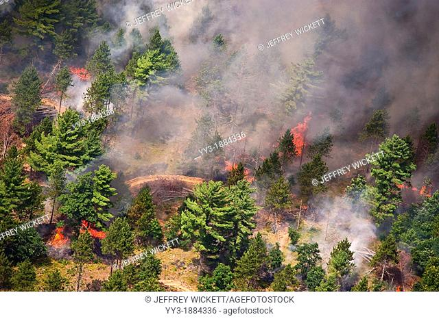 Aerial view of prescribed burn on the Manistee National Forest in Michigan, USA