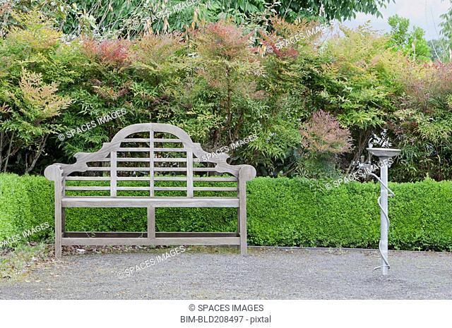 Drinking fountain and ornamental wooden bench