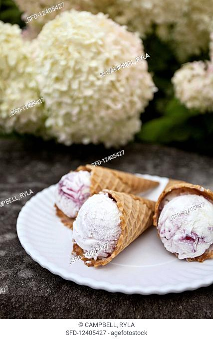 Blueberry and vanilla ice cream cones on a white plate with flowers in the background