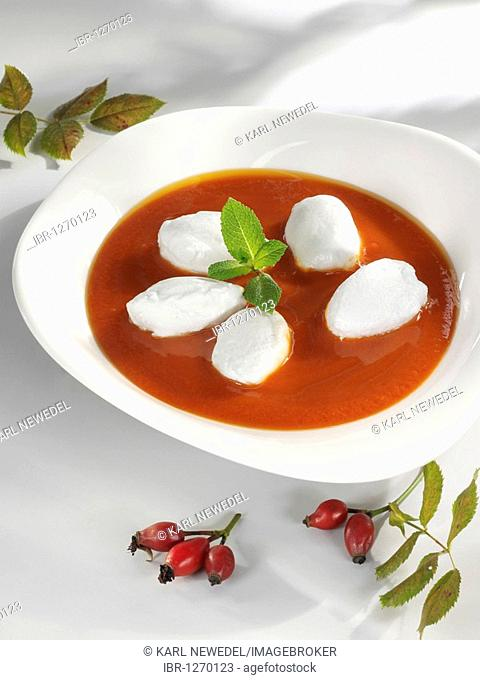 Rosehip soup with snow dumplings and basil in a soup bowl, whole rosehips on a branch with leaves
