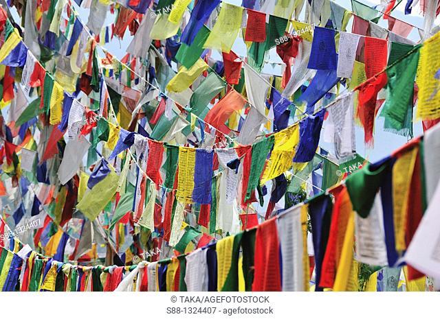 Tibetan prayer flag at Tsuglagkhang Temple