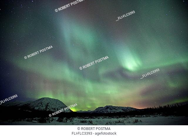 Aurora borealis or northern lights above Whitehorse, Yukon