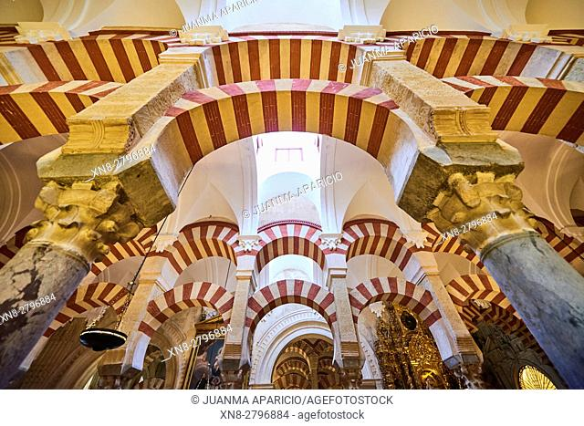Mosque-cathedral, indoor view, Córdoba, Andalusia, Spain, Europe