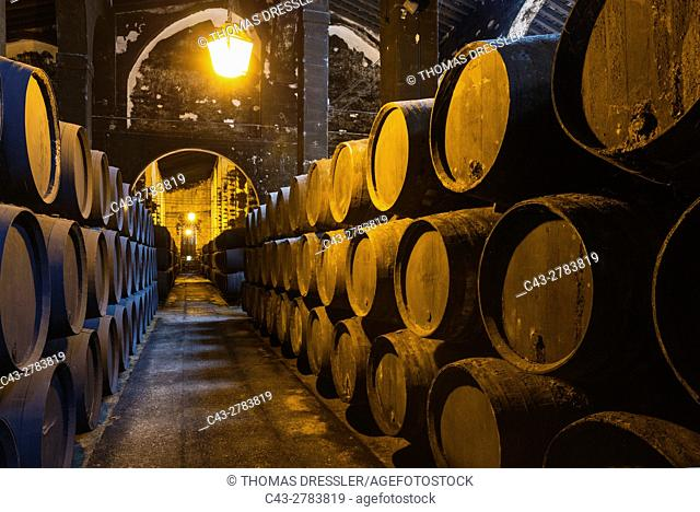 Stacked oak barrels in one of the cellars at the Bodegas Fundador Pedro Domecq in Jerez de la Frontera. Cadiz province, Andalusia, Spain
